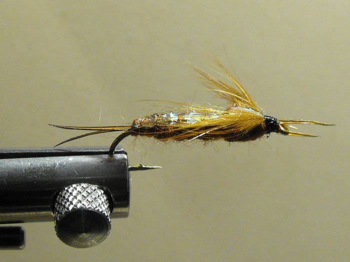 Stonefly, Brown - Flash Back