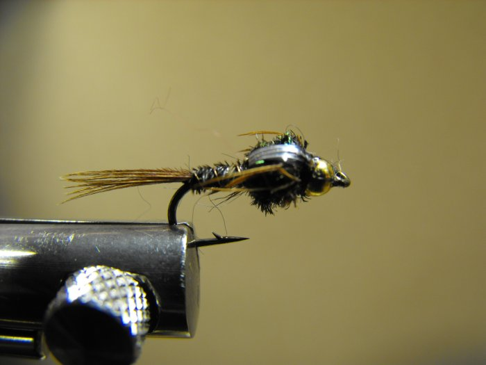 Pheasant Tail - Brass Bead Head