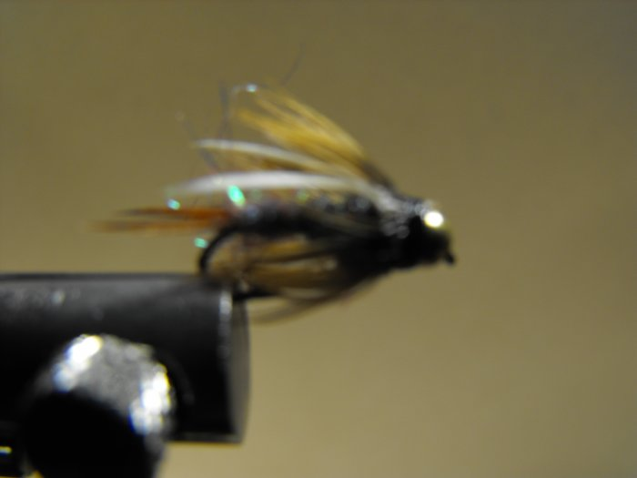 Rainbow Prince Nymph - Brass Bead Head