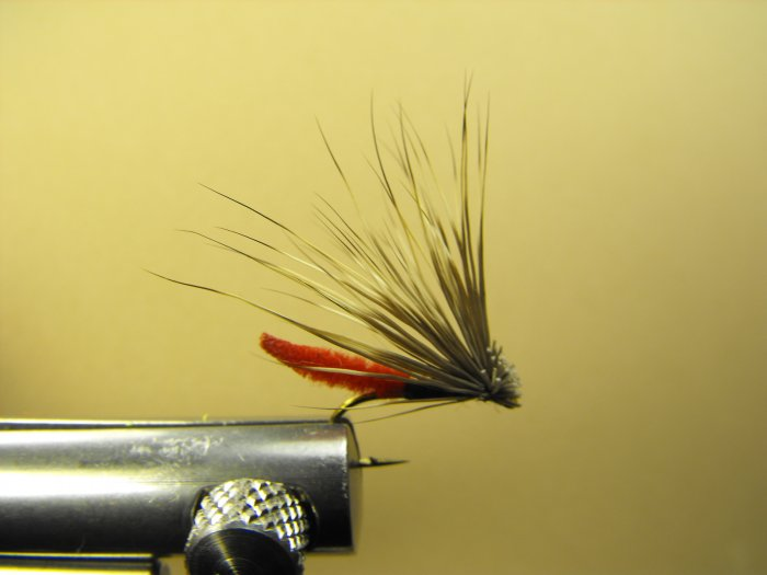 Extended Bodied Elk Hair Caddis - Red