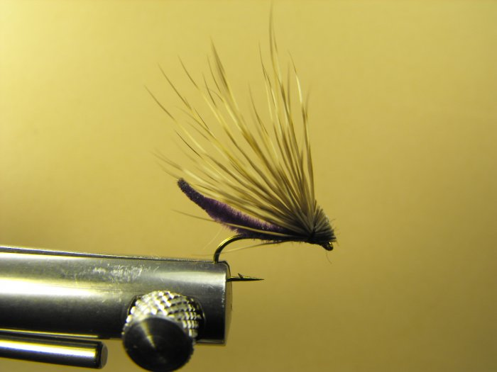 Extended Bodied Elk Hair Caddis - Purple