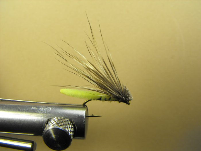 Extended Bodied Elk Hair Caddis - Chartreuse