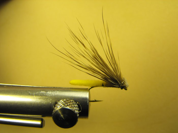 Extended Bodied Elk Hair Caddis - Yellow