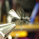12 -  Winged Black Ant  -  Dry Fly  Assortment