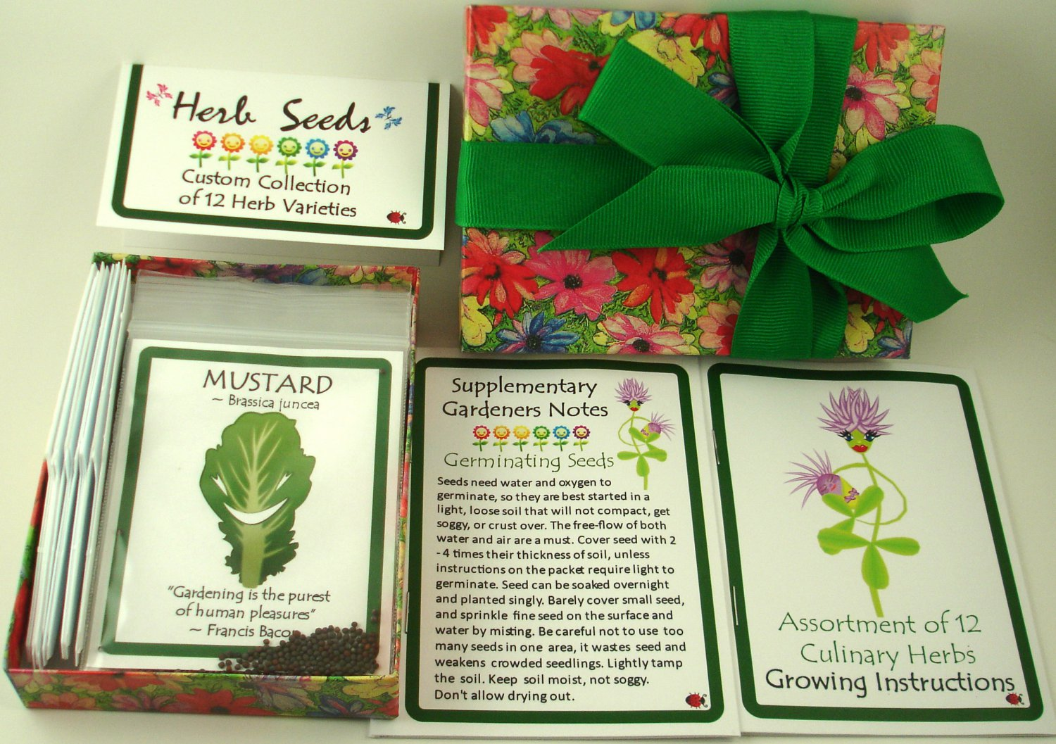 Gift Box Assortment of 12 Culinary Herb Seeds