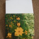 Blank Flower Cards with Envelopes!