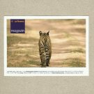 LUFTHANSA AIRLINE MAGAZIN TIGER ADVERTISING POSTCARD