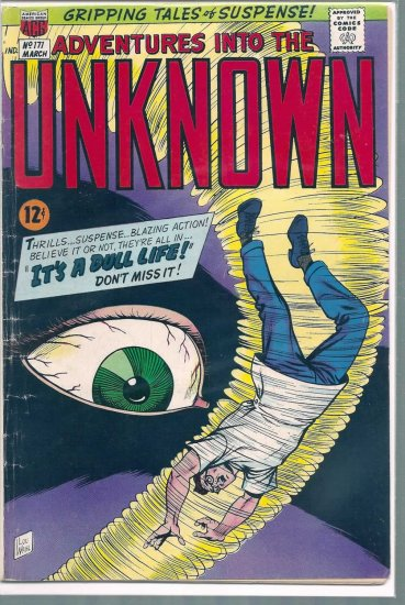 ADVENTURES INTO THE UNKNOWN # 171, 4.5 VG +