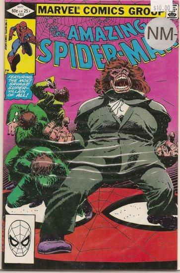 Amazing Spider-Man # 232, 9.2 NM -