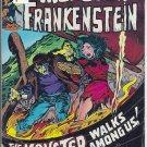 Frankenstein # 5, 5.5 FN -