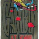 GAMBIT  # 1, 9.6 NM +