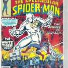 SPECTACULAR SPIDER-MAN # 9, 5.5 FN -