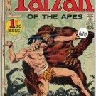 Tarzan # 207, 9.2 NM -