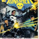 PUNISHER ASSASSIN'S GUILD, 8.0 VF