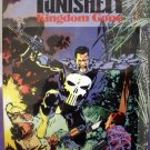 Punisher: Kingdom Gone # 1, 8.5 VF +