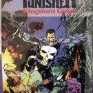 Punisher: Kingdom Gone # 1, 8.5 VF +