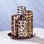 Safari Candle Set -33726