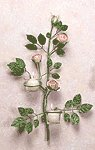 Metal Rose Wall Sconces -33596