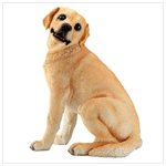 Golden Retrievers -30423