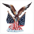 Eagle and Flags Night Light -34095