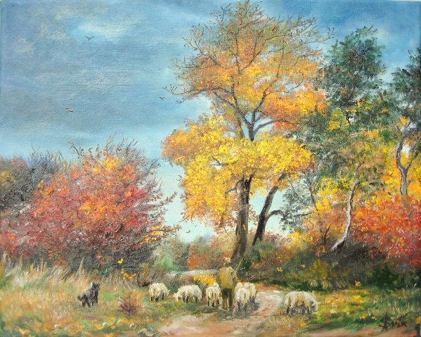 With Sheep on Pasture
