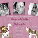 Cocalo Jacana Jungle Baby Shower Invitation Party Goods Supplies
