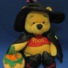 Disney Winnie Pooh Halloween Witch Beanbag Plush Cute