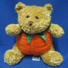 Teddy Bear Autumn Halloween Pumpkin Plush Snuggie Toy