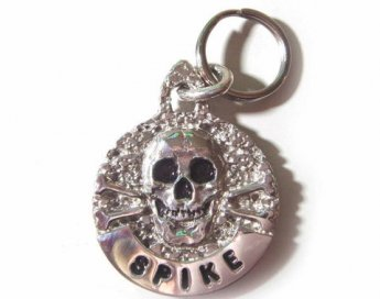 Skull & Cross Bones Tag