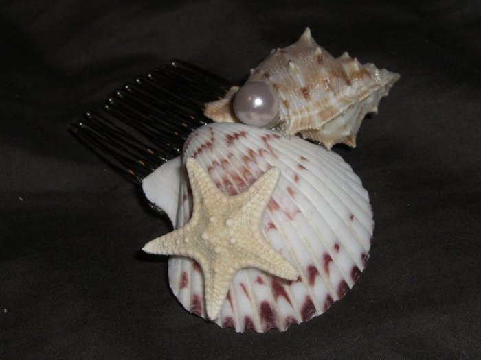 By The Sea Shore Hair Comb