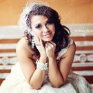 Birdcage veil with a free give away crystal Feather Fascinator in ivory or white