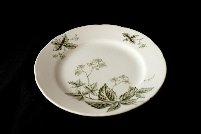 John Edwards china table plate Tea Leaf design