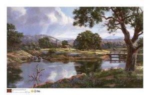 """""""Peaceful Pond"""" Nenad Mirkovich"""