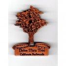 Drive Thru Tree Redwood Magnet #4004 HWP