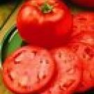 Homestead Tomato Seeds - 50