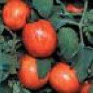 Elberta Peach Tomato Seeds  - 50