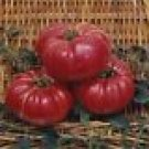 Dutchman Tomato Seeds - 50