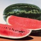 Congo Watermelon Seeds - 30