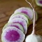 Watermelon Radish Seeds - 400