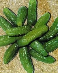Paris Pickling Cucumber - 35