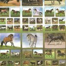 #KF006 ANIMAL HORSES PVC Removable Sticker