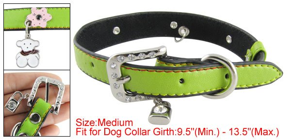 Pet Dog Sz M Green Faux Leather Band Personalized Collar