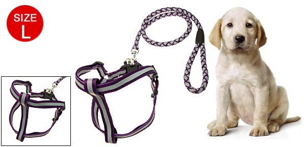 Purple Step-In Nylon Puppy Pet Safe Reflective Harness and Leash Set