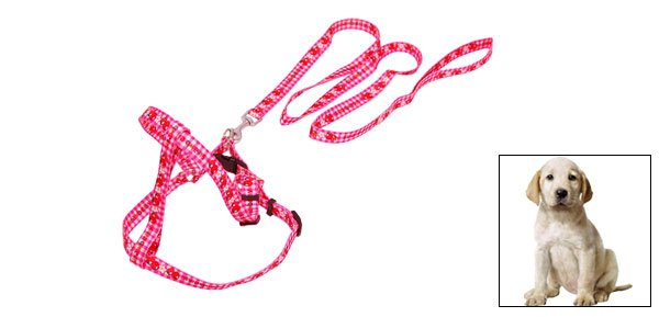 Pet Doggie Doggle Puppy Dog Adjustable Nylon Collar and Leash Set