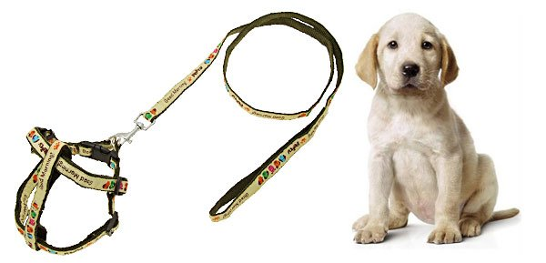 Army Green Color Nylon Dog Pet's Leash Lead & Harness