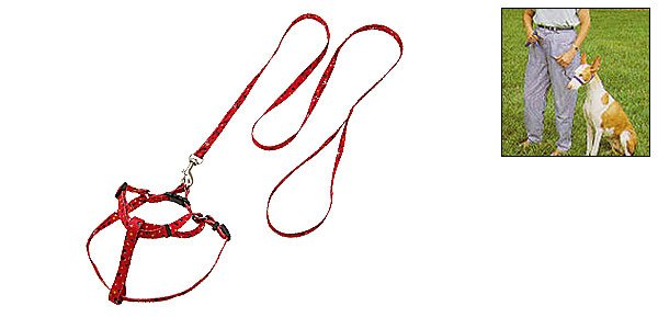 Red Pet Dog Nylon Adjustable Pulling Harness and Round Leash Small Size