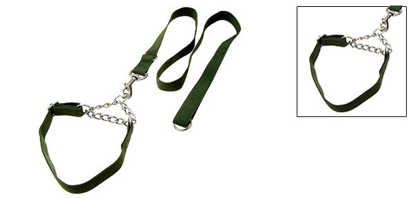 Olive Green Nylon Dog Adjustable Collar and Leash Set Small