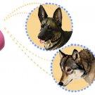 Electric Digital Ultrasonic Voice Recorder Dog Trainer Purple Pink