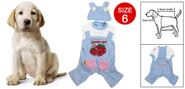 Sz 6 Strawberry Pattern Blue White Jumpsuit with Hat for Dog