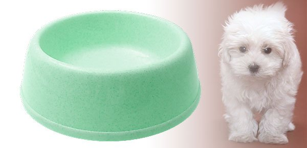 Pet Cat Dog Round Solid Plastic Water Food Feeder Bowl Dish